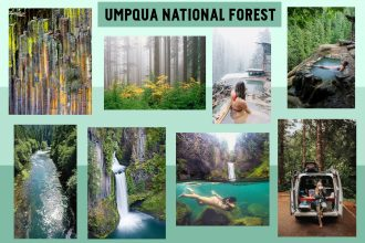 umpqua_national_forest_023